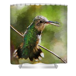 Happy Hummingbird Shower Curtain