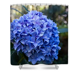 Happy Hydrangea Shower Curtain