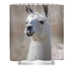 Happy Shower Curtain by Robin-Lee Vieira