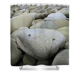 Happy Rock Shower Curtain