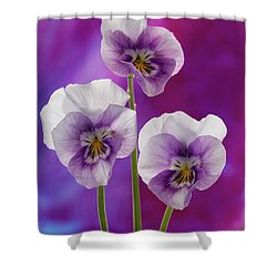 Happy Smilie Faces 2 Shower Curtain by Shirley Mitchell
