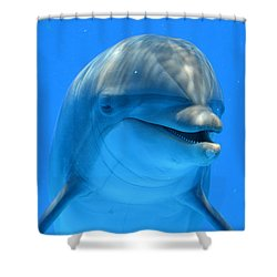 Happy Smiling Dolphin Shower Curtain by Richard Bryce and Family