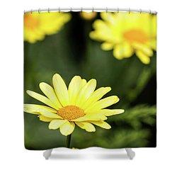 Happy Summer Flowers Shower Curtain