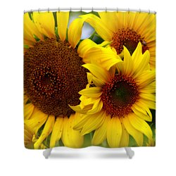Shower Curtain featuring the photograph Happy Sunflowers by Kay Novy