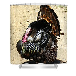 Shower Curtain featuring the photograph Happy Thanksgiving by Joseph Frank Baraba