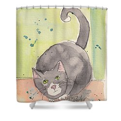 Shower Curtain featuring the painting Happy Tuxedo by Terry Taylor