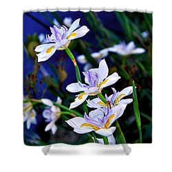 Happy Wild Iris Shower Curtain by Kaye Menner
