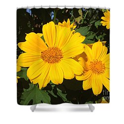 Happy Yellow Shower Curtain