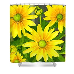 Happy Yellow Summer Cone Flowers In The Garden Shower Curtain