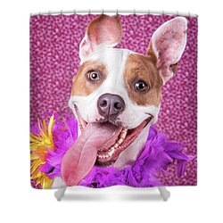 Hapy Dog Shower Curtain by Stephanie Hayes