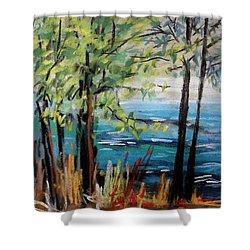 Harbor Trees Shower Curtain by John Williams