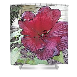 Hardy Hibiscus Shower Curtain