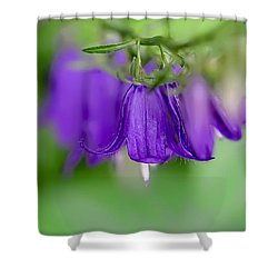 Shower Curtain featuring the photograph Harebells Or Bluebell by Leif Sohlman