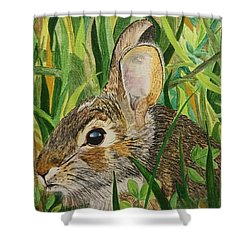Hare's Breath Shower Curtain