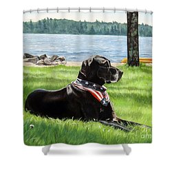 Harley At The Beach Shower Curtain