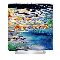 Harmony In Blue And Gold  Shower Curtain by Trudi Doyle