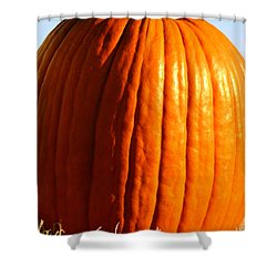 Harvest Shower Curtain by Amanda Barcon