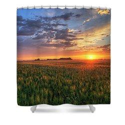 Harvest Shower Curtain