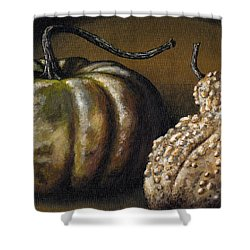 Harvest Gourds Shower Curtain by Adam Zebediah Joseph
