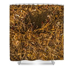 Harvest Leftovers Shower Curtain
