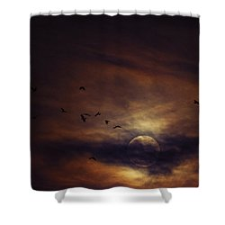 Shower Curtain featuring the photograph Harvest Moon Over Texas by Karen Slagle