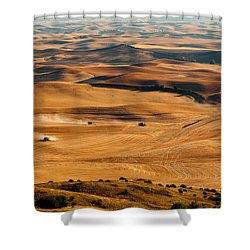 Harvest Overview Shower Curtain by Mary Jo Allen