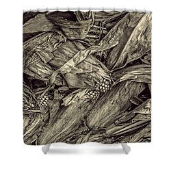 Harvest Shower Curtain by Pat Cook