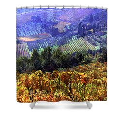 Harvest Time At The Vineyard Shower Curtain by Elaine Plesser