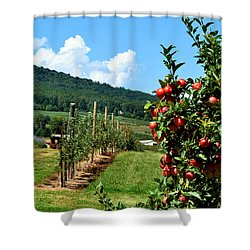 Harvest Time In The Catoctin Mountains Shower Curtain