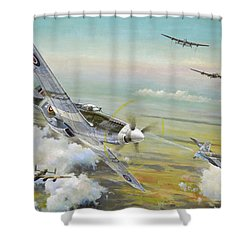 Haslope's Komet Shower Curtain