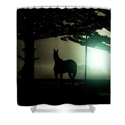 Hat-trick Shower Curtain