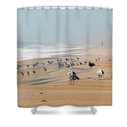 Hatteras Island Beach Shower Curtain