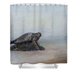 Shower Curtain featuring the photograph Hauling Out by Robin-Lee Vieira