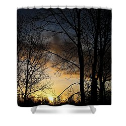 Haunt Shower Curtain
