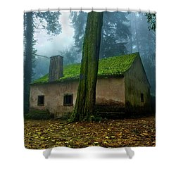 Haunted House Shower Curtain by Jorge Maia