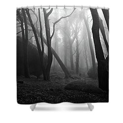 Haunted Woods Shower Curtain by Jorge Maia