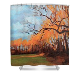 Shower Curtain featuring the painting Haunting Glow by Andrew Danielsen