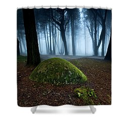 Shower Curtain featuring the photograph Haunting by Jorge Maia