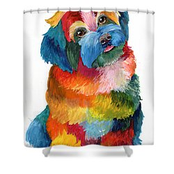 Hava Puppy Havanese Shower Curtain by Sherry Shipley