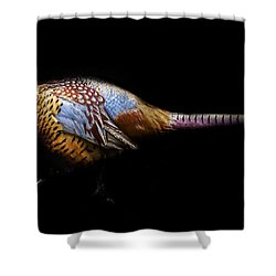 Have A Pheasant Day.. Shower Curtain by Martin Newman