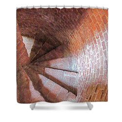 Have Pirates Used These Steps Shower Curtain