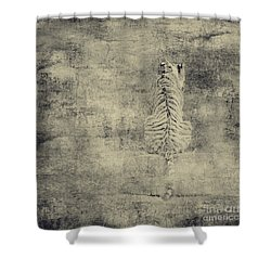 Have You Comprehended... Shower Curtain by Dana DiPasquale