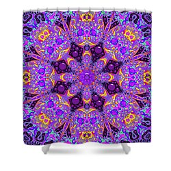 Shower Curtain featuring the digital art Have You Seen Her by Robert Orinski
