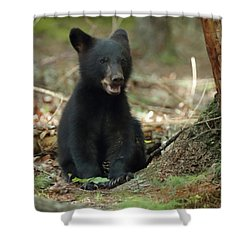 Have You Seen My Mother Shower Curtain