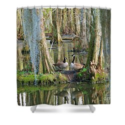 Haven Shower Curtain by Sheila Ping