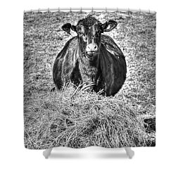 Having A Hay Day Shower Curtain