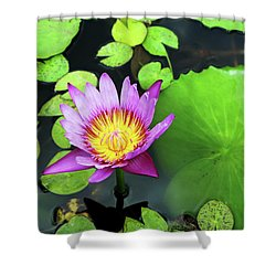 Hawaii Flora Shower Curtain by Denise Moore