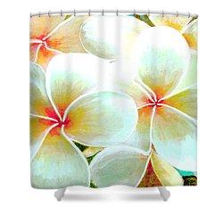 Hawaii Plumeria Frangipani Flowers #86 Shower Curtain by Donald k Hall