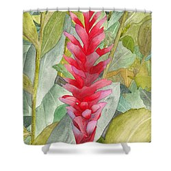 Hawaiian Beauty Shower Curtain