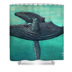 Hawaiian Humpback Whales #455 Shower Curtain by Donald k Hall